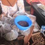 Tanpa Rempah, Indonesia Mungkin Tak Pernah Ada