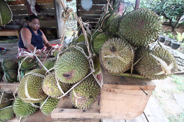 Durian di tepi jalan (mohon jangan acuhkan ibu di belakang itu)