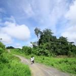 Cerita Penjaga Hutan Kalimantan
