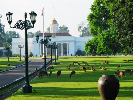 Kebun Raya Bogor (sumber : wikiwisata.com)