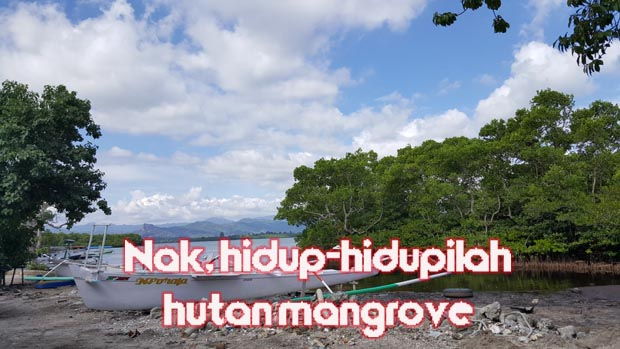 Hidup-hidupilah Hutan Mangrove