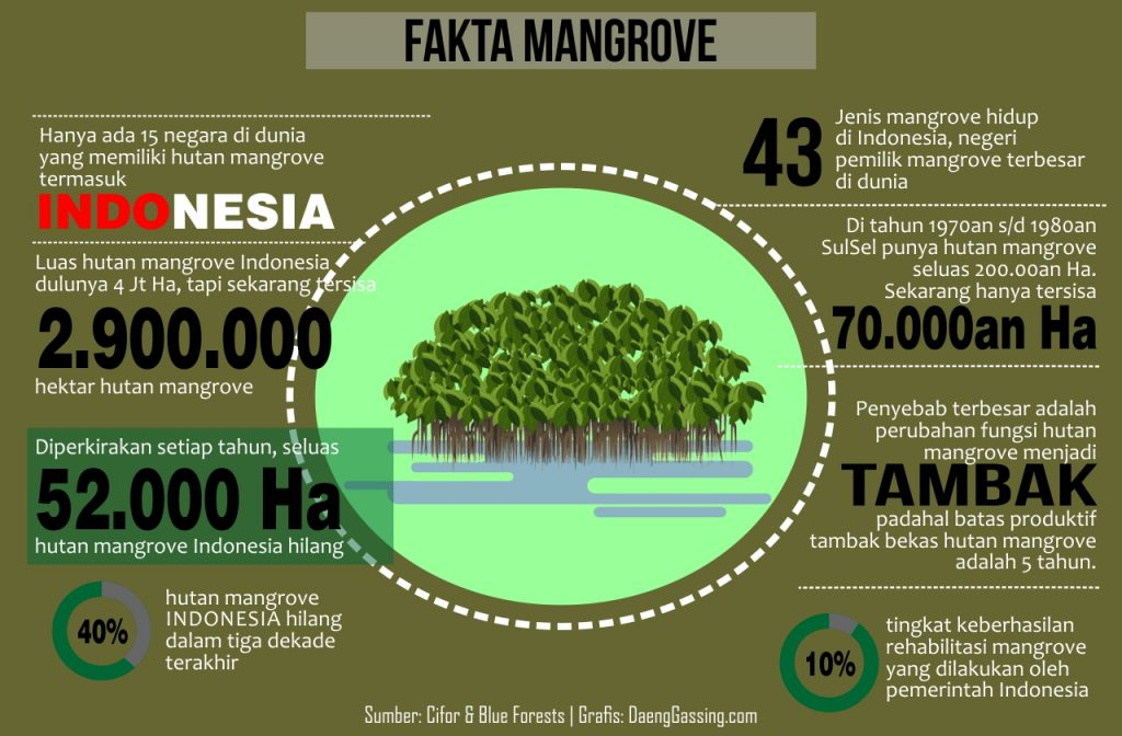 Fakta Mangrove