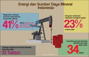 energi mineral indonesia
