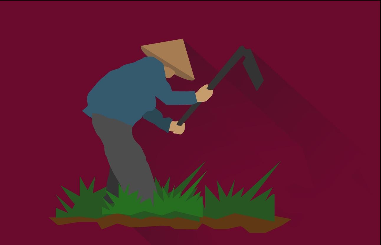 Kisah Para Petani