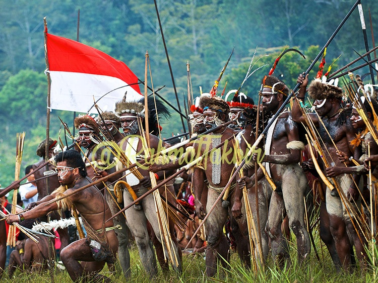 Koteka Papua