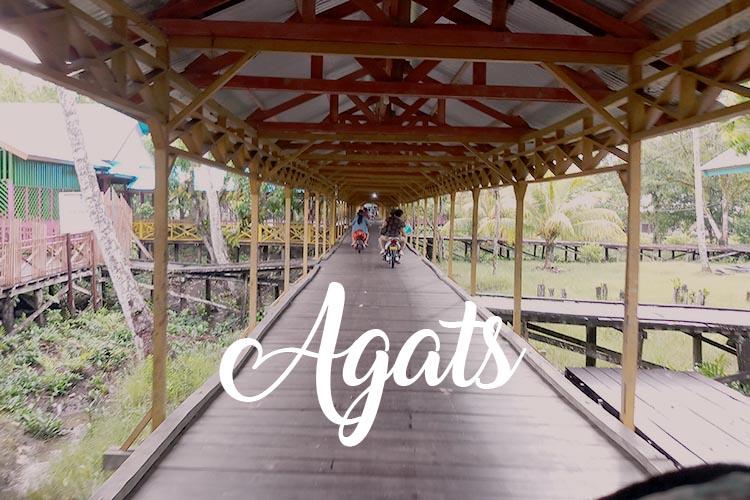 Agats; Hidup di Atas Papan