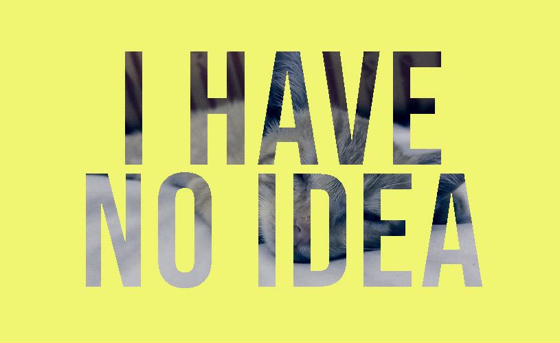 tidak ada ide